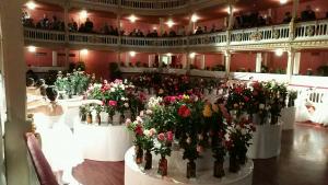 Imatge de l'exposició de flors del Concurs Nacional de Roses, al Teatre Bartrina