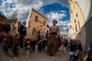 Les imatges de Josep Martí de la 16a Trobada Gegantera dels Pallaresos.