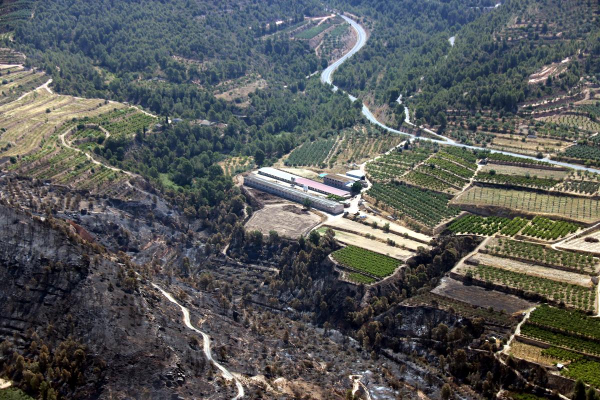 Imatge de la granja de la Torre de l'Espanyol on es va originar l'incendi