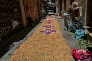L'elaboració de les catifes de flors del concurs de Corpus de Valls