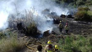 Els Bombers treballen per extingir un incendi de matolls entre Calafell i el Vendrell