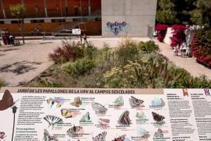 Imatge del Jardí de les Papallones de la Universitat Rovira i Virgili de Tarragona.