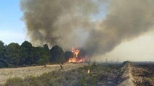 L'incendi hauria començat a una zona propera de la C-221 i ha saltat el riu