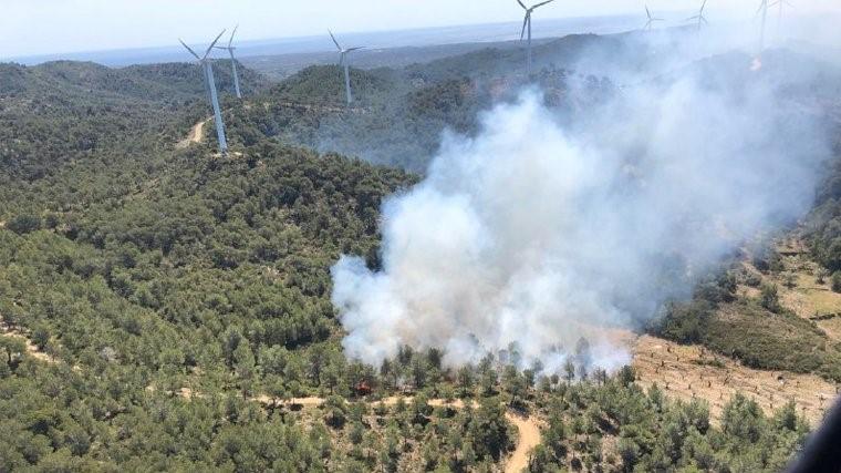 L'incendi crema al Perelló, a la zona de la Collada
