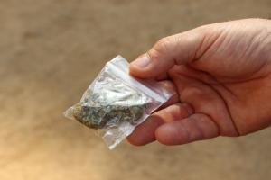 Amb menys de cinc minuts, en Ron ha trobat les bossetes de marihuana