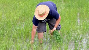 El pla té l'objectiu de generar riquesa en l'entorn rural i forestal