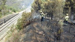 L'inendi ha cremat un total de 3.500 metres quadrats de massa forestal