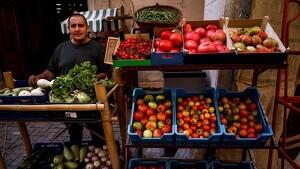 En Miquel Hernández té una botiga a Falset on ven tots els productes que cull de la seva horta
