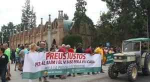 Els viticultors del Penedès han fet vaga aquest 5 de setembre.