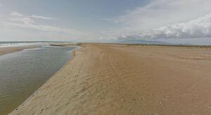 Només la platja de l'Eucaliptus, a Amposta, ha registrat una qualitat de l'aigua alterada