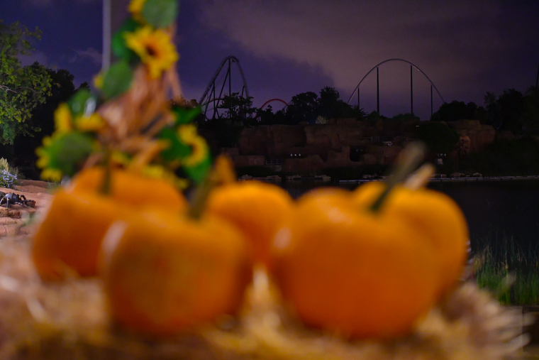 Halloween ja ha arribat a PortAventura World.