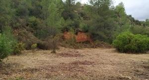 El Torrent de les Segueres, a la Bisbal del Penedès.