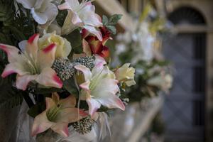 Visita guiada del Cementiri de Tarragona, en imatges!