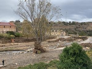 La zona afectada de l'Espluga de Francolí, aquest dijous al matí.