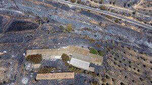 L'incendi a la zona situada entre la Palma d'Ebre i Flix on es pot veure una granja de bestiar afectada pel foc
