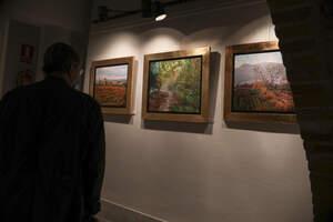 El Museu d'Alcover inaugura l'exposició 'El silenci dels paisatges'