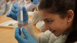 Els tallers posaran en valor la tasca d'investigadores de la URV i l'ICIQ