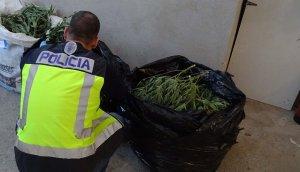 Desarticulada una organització dedicada al tràfic de drogues a Tortosa.