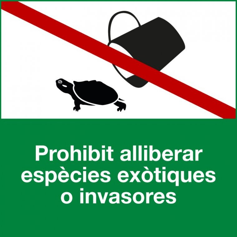 Crida dels Agents Rurals a no alliberar espècies invasores