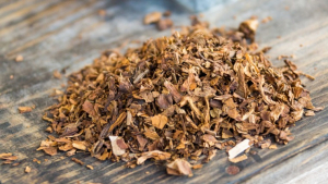 Tobacco is a product prepared from the leaves of the tobacco plant, Nicotiana tabacum, by curing them. |