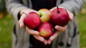 Learn more about nutrition facts and benefits of apples