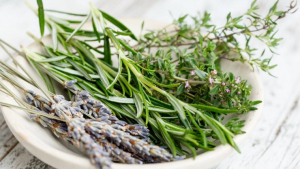 Scientifically known as Rosmarinus officinalis, rosemary is one of the evergreen herbs.