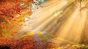 El otoño durará hasta el 21 de diciembre