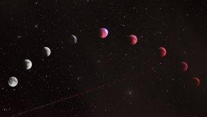 Zodiaco: Las 12 predicciones del...