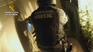 Imagen proporcionada por los cuerpos de seguridad en uno de los domicilios donde se ha incautado droga