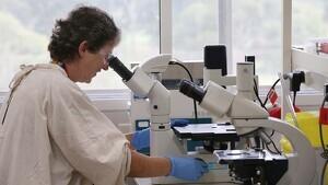 Imagen de una cientifica investigando sobre el coronavirus