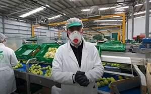 Fotograma del vídeo publicado por Mercadona donde salen empleados de Agrícola Gil, Zaragoza. 20 de marzo de 2020