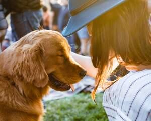 Una mujer con un sombrero en primer plano acaricia un perro