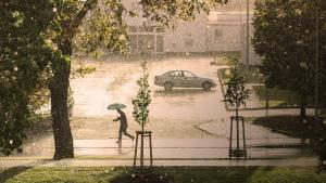 En la mitad norte peninsular, deberán recuperar el paraguas durante la mañana
