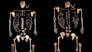 Restos de dos hermanos cazadores recolectores encontrados en Castilla y León