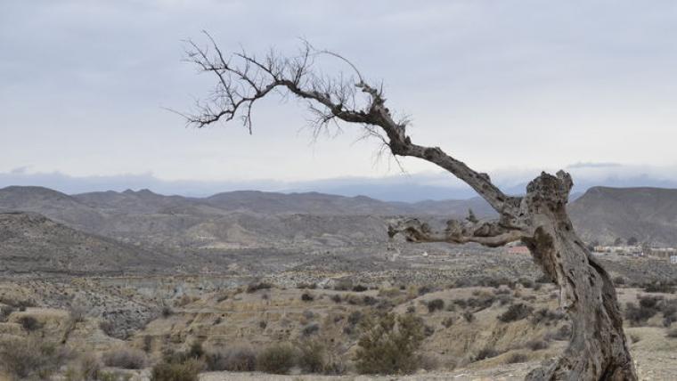 Vista del desierto de Tabernas, en Almería
