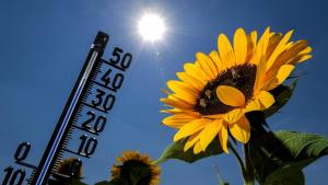 La primera ola de calor del año empieza este fin de semana