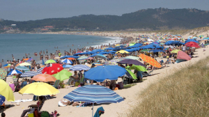 Una peligrosa bacteria conocida desde hace años se extiende por las playas a causa del Cambio Climático