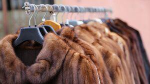California prohíbe la fabricación y venta de nuevos productos de pieles animales
