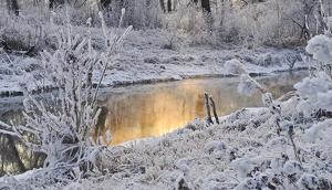 El frío y las nevadas volverán a ser las protagonistas de cara a domingo en el norte peninsular