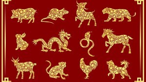 Read about the personality of the Chinese Zodiac signs.