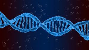 El síndrome de Marfan está causado por una alteración genética.