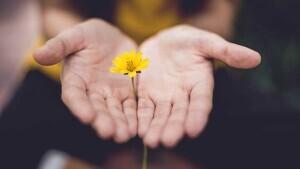 Cartas para pedir perdón y expresar tus sentimientos