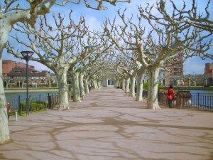 Basses de les Borges Blanques al Passeig del Terrall