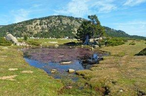 Un tros de Pirineu a la comarca de la Cerdanya