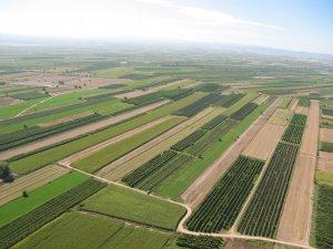 Paisatge agrícola del Pla d'Urgell