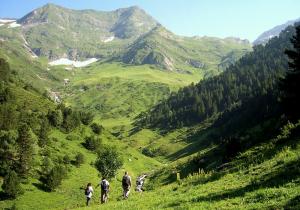 Parc Natural de l'Art Pirineu