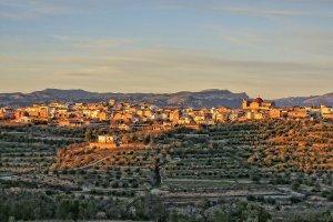 Vista del poble del Masroig envoltat de vinya, al Priorat