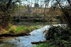 Aiguabarreig del Segre i el Cinca