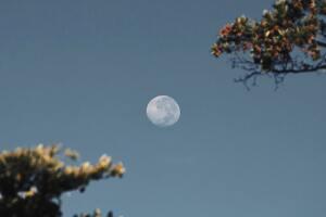 La lune dans le ciel du jour