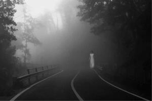 Apparition femme blanche sur la route dans le brouillard